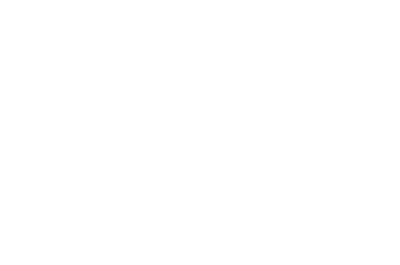 The Spirit of Bongo's Bingo